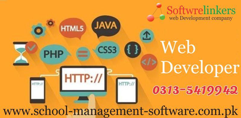 Web developer in Pakistan